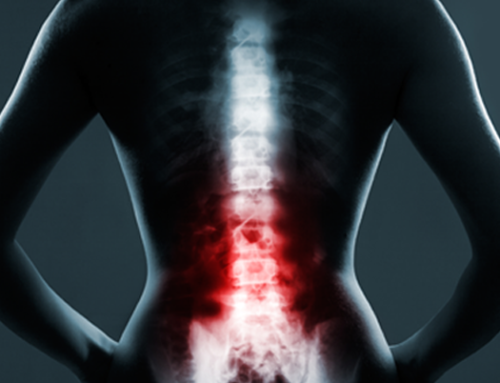 Your spine supports your upper body, but what supports your spine? And why do so many people have bad posture and back pain?